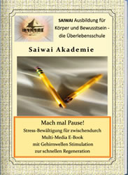 Pause machen - Cover